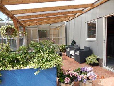 Bovenbouw dak polycarbonaat (11m breed en 5m diep) - Helder (lichtdoorlatend 75%)